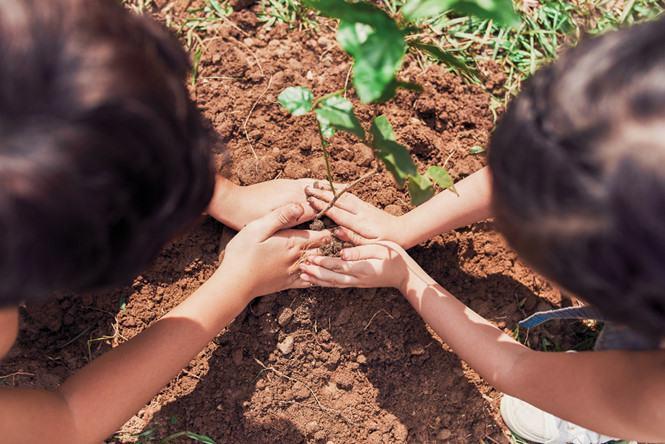 Gamuda Land chung tay vì một cuộc sống xanh